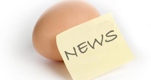 news_grande.jpg