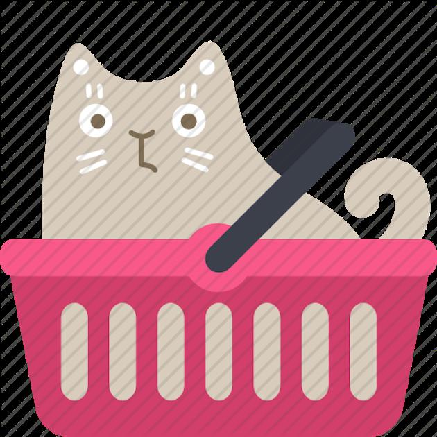 gatto social